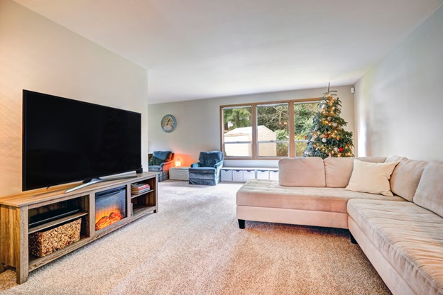 TV and fireplaces